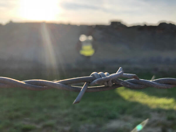 Taggtråd i Auschwitz Birkenau